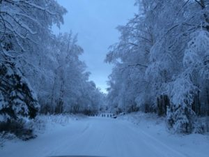 The Bourdess family received a beautiful snowfall in Alaska!